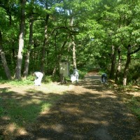 吉沢緑地公園